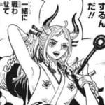 【悲報】ワンピースのヤマト、変身する